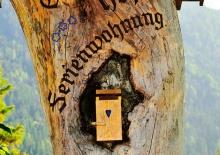 Urlaub in den Ferienwohnungen Gruberhof